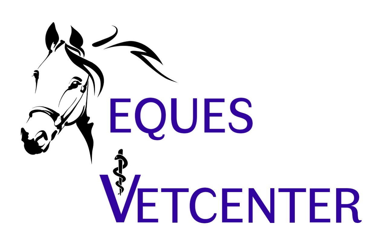 Eques Vetcenter